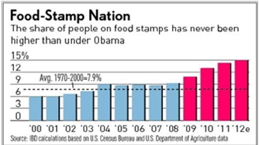 Food-Stamp-Nation