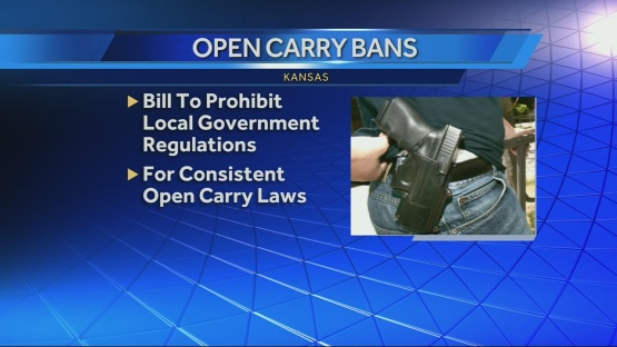 Kansas-bill-will-prohibit-local-gun-laws-img