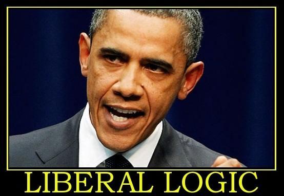 liberal-logic-liberal-hypocrisy-politics-1334703649