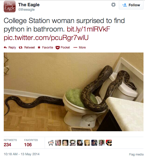 PYTHON IN BATHROOM