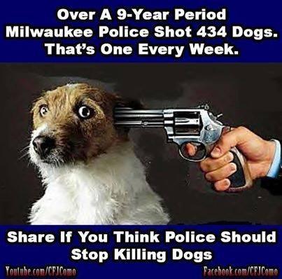 RWN Milwaukee War On Dogs