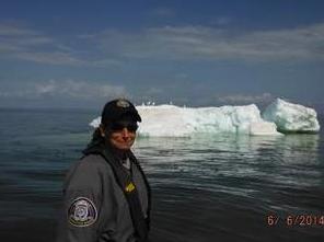 Superior Icebergs