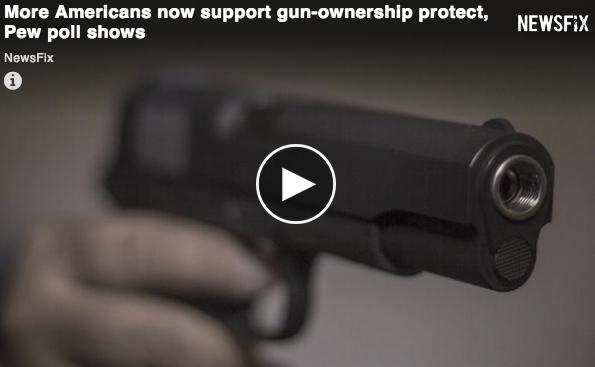 Pew Gun Control